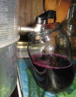 Как сделать домашнее вино без сахара